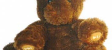 Nabar, L'ós Que Explica Contes En Mp3