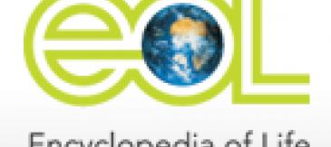 L'Enciclopèdia De La Vida Neix A Internet