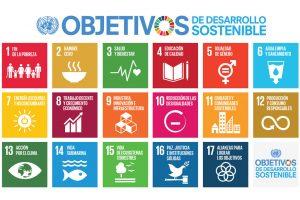 Objectius de Desenvolupament Sostenible - ODS 2019